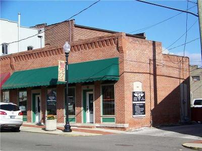 Mooresville Commercial For Sale: 19 South Indiana Street