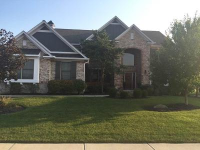 Noblesville Single Family Home For Sale: 16392 Overlook Park Place