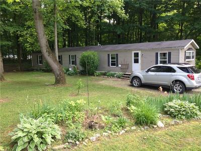 Parke County Single Family Home For Sale: 10383 East Red Rose Ln