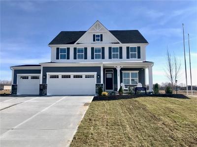 Plainfield Single Family Home For Sale: 7241 Martock Drive