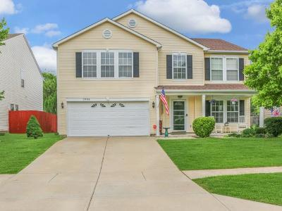Johnson County Single Family Home For Sale: 2984 Sentiment Lane