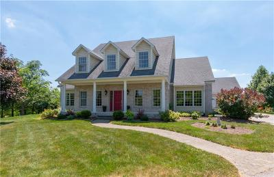 Brownsburg Single Family Home For Sale: 6459 Sunshine Meadows Lane
