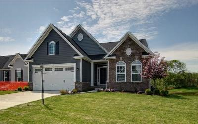 Arcadia, Cicero, Noblesville Single Family Home For Sale: 5155 Montview Way