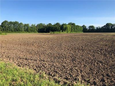 Madison County Residential Lots & Land For Sale: 4014 East 250 North