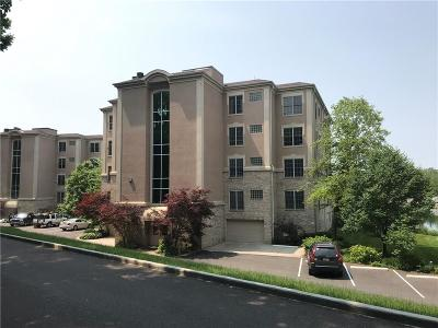 Indianapolis Condo/Townhouse For Sale: 6750 Spirit Lake Drive #101