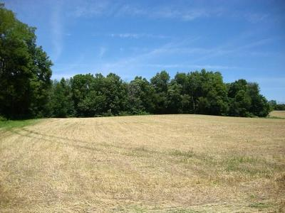 Henry County Residential Lots & Land For Sale: 650 North Prairie Road