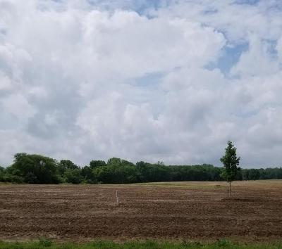 Danville Residential Lots & Land For Sale: 3991 East County Road 200 S