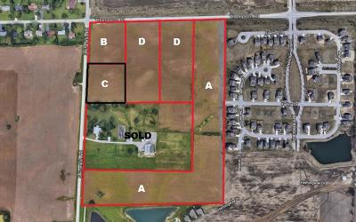 Indianapolis Commercial Lots & Land For Sale: 5151 South Franklin Road #C