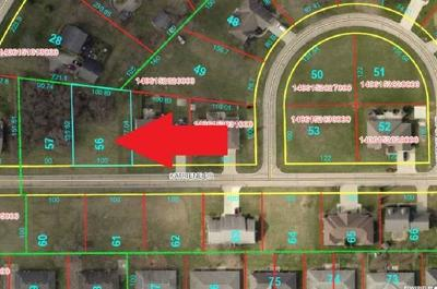 Delaware County Residential Lots & Land For Sale: Lot 56 Katriene Drive