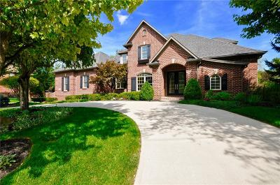 Westfield Single Family Home For Sale: 16577 Brookhollow Drive