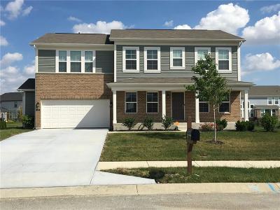 McCordsville Single Family Home For Sale: 6405 Woodland Lane