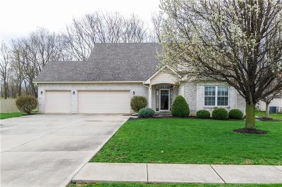 Plainfield Single Family Home For Sale: 5975 South County Road 700 E