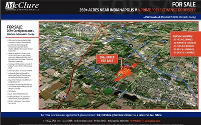Plainfield Commercial For Sale: 4825 Indiana Road