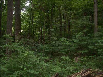 Mooresville Residential Lots & Land For Sale: 205 Lake Hart