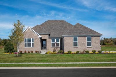 Avon Single Family Home For Sale: 8965 Prairie Trail