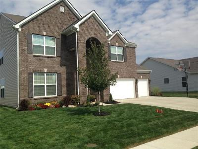 McCordsville Single Family Home For Sale: 6574 West Deer Hill Drive