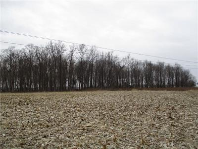 Hancock County Residential Lots & Land For Sale: 1100 North 625 Road E