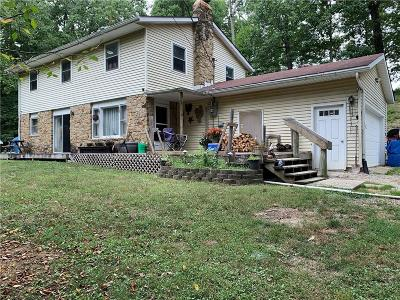 Bargersville Single Family Home For Sale: 7340 West Division Road