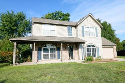 Indianapolis Single Family Home For Auction: 6817 Silver Grove Court