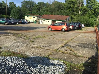 Indianapolis Commercial For Sale: 1936 East Southport Road