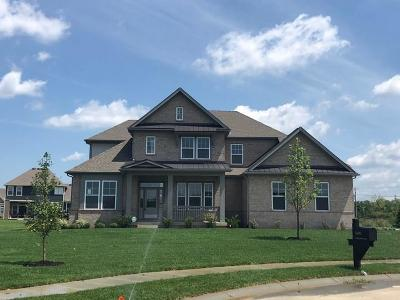 Fishers Single Family Home For Sale: 16292 Spring Bank Court