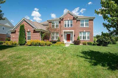 Zionsville Single Family Home For Sale: 8900 Spring Violet Place