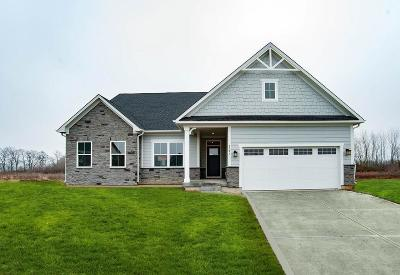 Brownsburg Single Family Home For Sale: 2791 Grayber Lane
