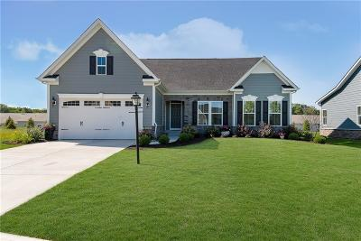 Noblesville Single Family Home For Sale: 4923 Montview Way