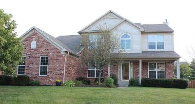 Noblesville Single Family Home For Sale: 19013 Mill Grove Drive