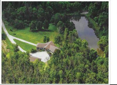 West Harrison Single Family Home For Sale: 25651 Steele Road