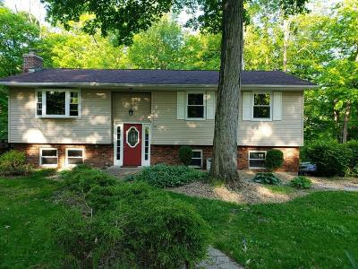 Lawrenceburg Single Family Home For Sale: 23292 Maplewood Ct Court