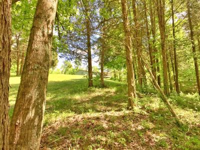 Ripley County Single Family Home For Sale: 9482 S Werner Road