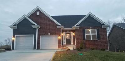 Harrison, Lawrenceburg Single Family Home For Sale: 124 Augusta Drive