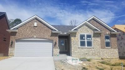 Harrison, Lawrenceburg Single Family Home For Sale: 125 Augusta Drive