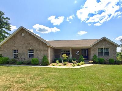 Ripley County Single Family Home For Sale: 678 E County Road 200 S