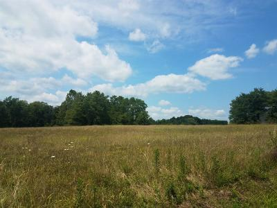 Residential Lots & Land For Sale: Turner Road
