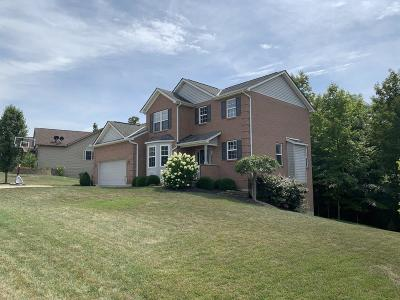 Lawrenceburg IN Single Family Home For Sale: $250,000