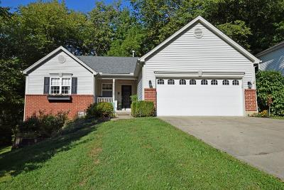 Dearborn County Single Family Home For Sale: 20343 Alpine Drive