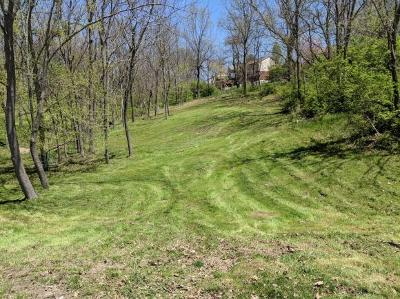 Dearborn County Residential Lots & Land For Sale: Longview Drive