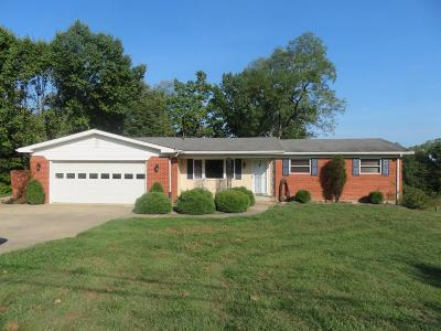 Dearborn County Single Family Home For Sale: 13092 Probst Road