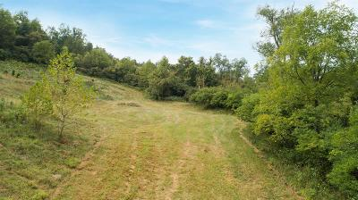 Dearborn County Residential Lots & Land For Sale: Nowlin Avenue