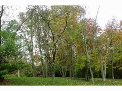 Hidden Valley Residential Lots & Land For Sale: Greenlawn