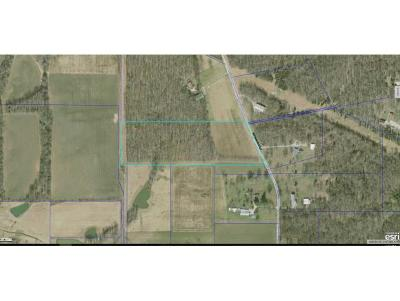 Sunman Residential Lots & Land For Sale: Weisburg Rd