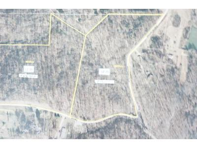Milan Residential Lots & Land For Sale: County Line Rd