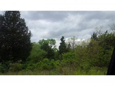 Lawrenceburg Residential Lots & Land For Sale: Mt Pleasant Rd