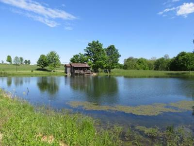 Dearborn County Farm & Ranch For Sale: 1 Lower Dillsboro Rd