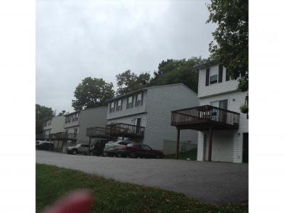 Aurora Multi Family Home For Sale: 11615 Sr 56
