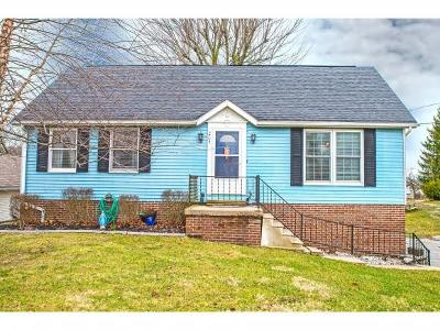 Batesville Single Family Home For Sale: 205 N Huntersville Rd