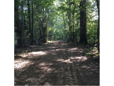Batesville Residential Lots & Land For Sale: Pocket Rd