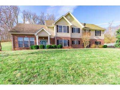 Lawrenceburg Single Family Home For Sale: 1075 Springwood Ct